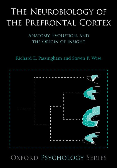 The Neurobiology of the Prefrontal Cortex: Anatomy, Evolution, and ...